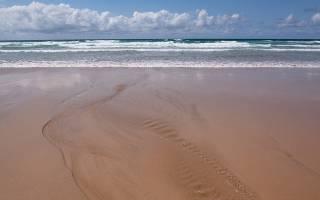 Что такое прилив и отлив моря