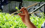 Как держать палочки для суши