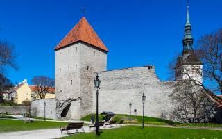 Что делать в Таллине в мае
