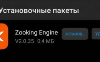 Zooking engine что это за программа