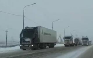 Когда в Волгограде будет снег