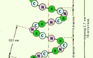 Что такое вторичная структура белка