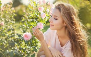 Какое значение имеет имя Роза