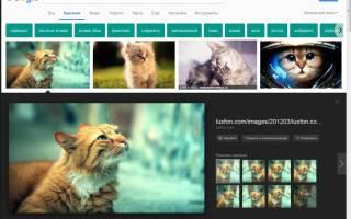 Как по фото сделать поиск в интернете