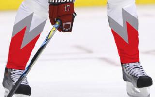 Для чего нужны гамаши хоккейные