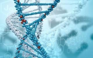 Как можно изменить ДНК человека